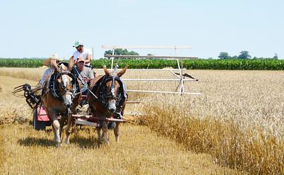 Monroe County Bicentennial Wheat Cutting And Threshing