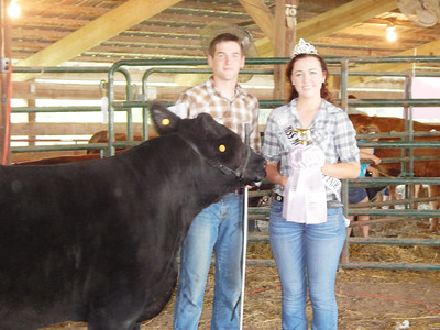 Monroe County Fair - 4H Youth Farm Animal Shows